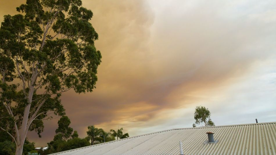 Fire in the air - Extreme Weather Weather Cloud - Sky Nature Smokey Fire ! Fire - Natural Phenomenon FIRE CLOUDS Summer Storms Australian Summer Australian Weather Western Australia EyeEm 2018 EyeEmNewHere EyeEm Nature Lover