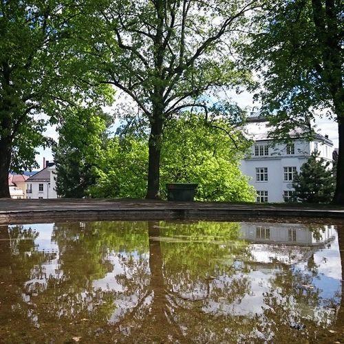 Uranienborg Majorstuen Oslo Norway Visitnorway Visitoslo Whereinoslo Lookatoslo Stakkarsoss Lifeincolors Reflections Refleksjoner Vannspeil Bachelorpause Pust Mirror