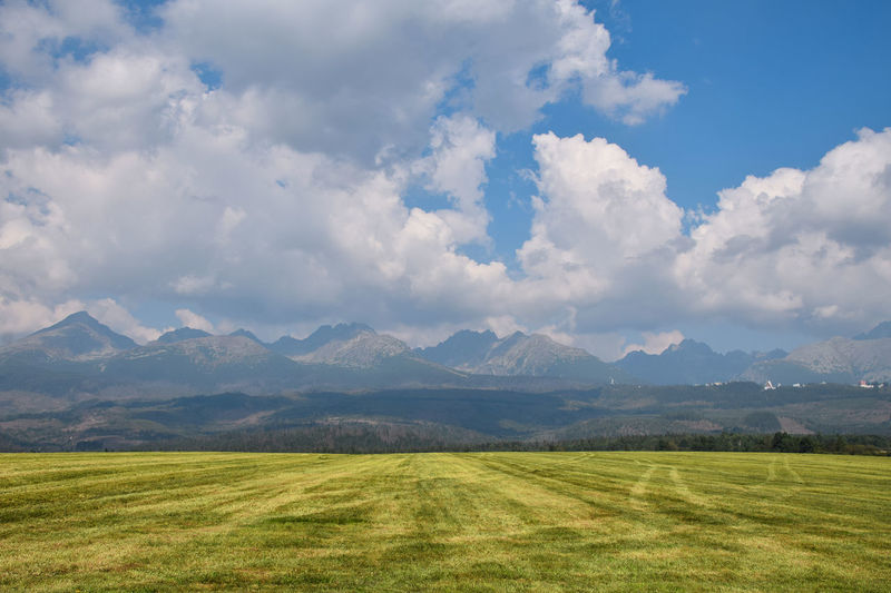 Summer green field view with mountain range at horizon with dramatic cloudscape Agriculture Rolling Landscape Cloud - Sky Sky Scenics - Nature Beauty In Nature Tranquil Scene Environment Green Color Landscape Mountain Range Tranquility Land Grass Nature Mountain No People Non-urban Scene Day Field Outdoors Plant Cloudscape Summer Cultivated Land Tatra Mountains Vysoke Tatry High Tatras Travel Travel Destinations Getting Away From It All Pastoral Beauty In Nature