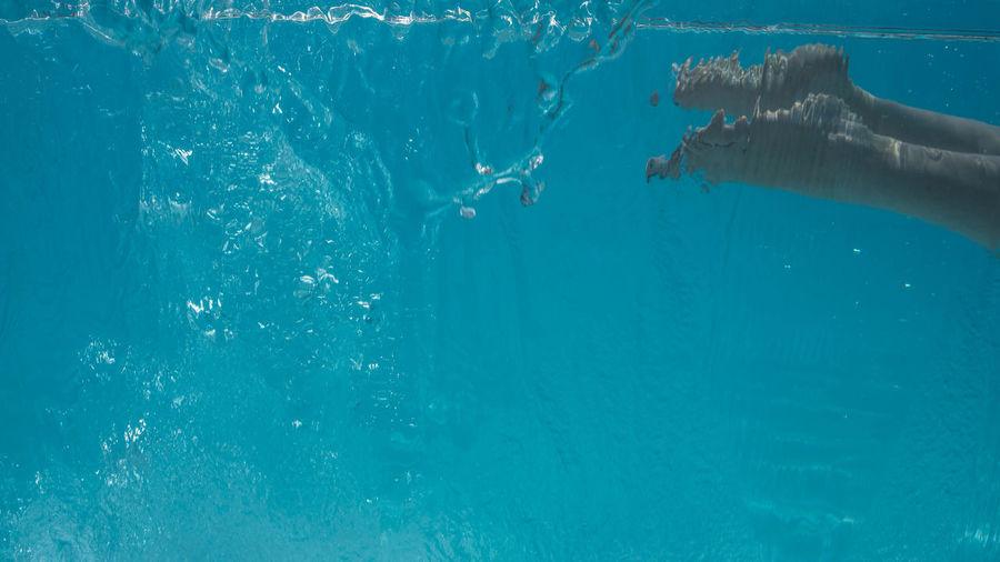 People swimming in pool