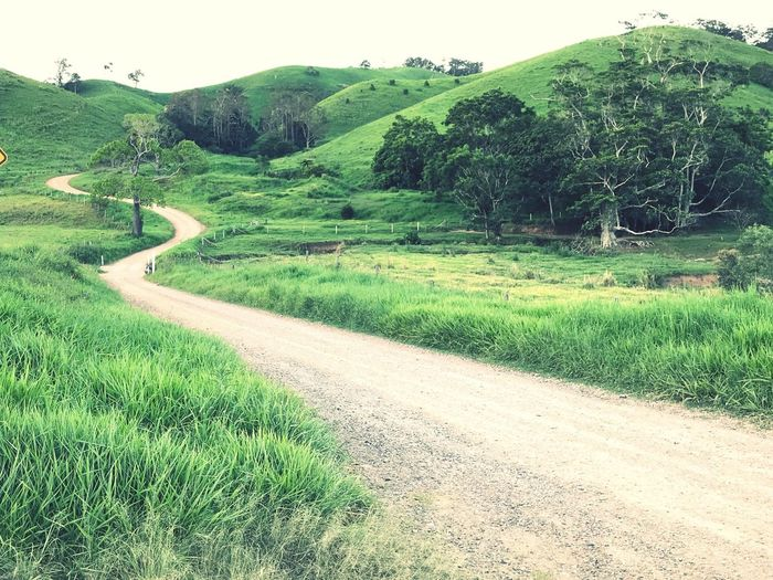 Rolling Hills Green Nature Landscape Winding Road Single Lane Road Adventure Grass Road Scenics