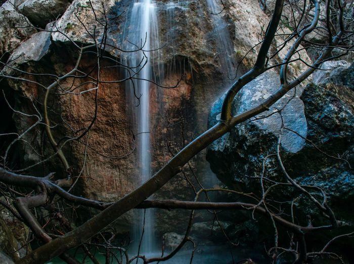 Paklenica creek waterfall Nature Photography Nature Croatia Long Exposure Waterfall Creek Tree Branch Water Forest Close-up