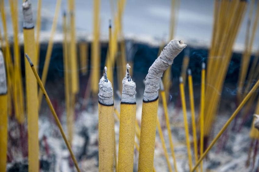 Buddhism Hong Kong Insence Stick Ngong Ping 360 Po Lin Monastery Religion Taoism Tradition Yellow