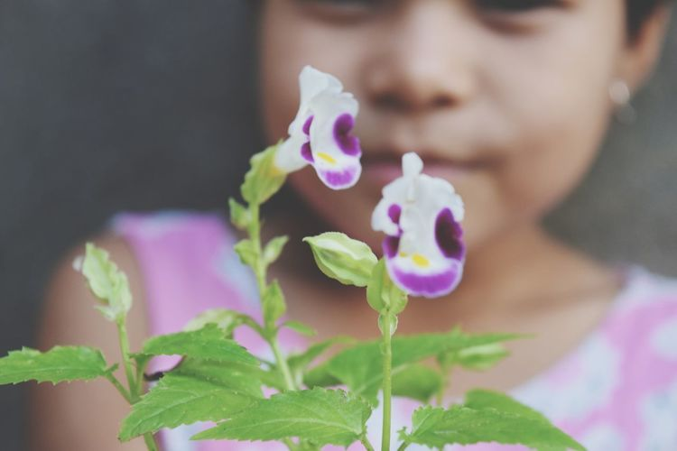 Close-Up Of Flowering Plant With Girl In Background