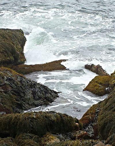 Reid State Park Mainephotography Ocean View Atlantic Ocean Taking Photos The Tide Rocks And Water Rising Tide EyeEm Best Shots Enjoying Life