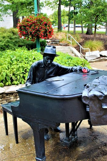 Hoagy Carmichael inkling the ivories Bloomington Bloomington, Indiana Hoagy Carmichael Iu Indiana University Music Piano Piano Moments Statue Bloomington In Day Flower Growth Iu Musical Instrument Musician Nature No People Outdoors Pianist Piano Keys Plant Sculpture Song Tree Adventures In The City The Traveler - 2018 EyeEm Awards The Great Outdoors - 2018 EyeEm Awards