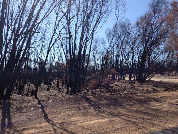 Bushfire 👣 Bushfireseason Bushfire