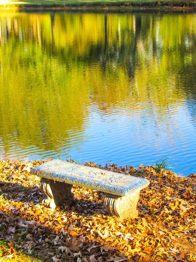 Water Day Lake Nature No People Outdoors Close-up Beauty In Nature Bench Seat Setting Area Calmness Alone Lonely Chair Bench Seat Reflections Water Reflections Autumn Leaves Autumn Fall Colors Fall Leaves TreePorn Tree Reflection In Rippled Water Rippling Water