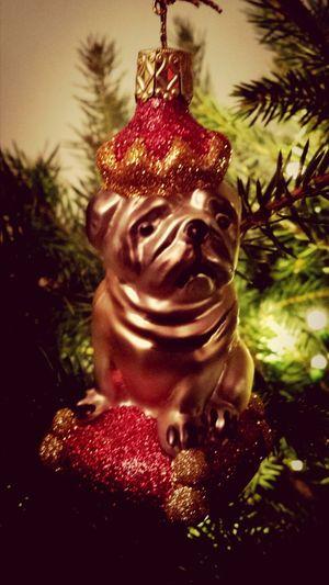 Xmas dog / Weihnachtshund Wachhund Xmas Xmasdecoration Christmas