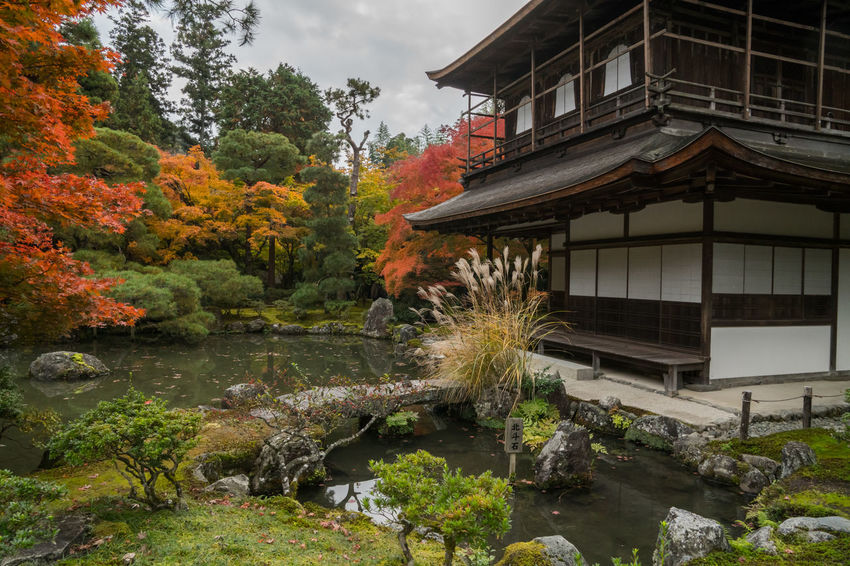 Architecture Beauty In Nature Building Exterior Built Structure Day Fall Nature No People Outdoors Sky Temple Tree Water Watermill