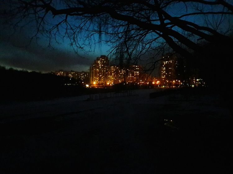 Tree Illuminated Sky Reflection Bare Tree Night Outdoors No People Building Exterior Sunset City Cloud - Sky Built Structure Architecture Nature Bridge - Man Made Structure Water