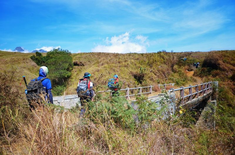 MOUNT RINJANI, LOMBOK INDONESIA. SEPT 16th 2017- Unidentified hikers start their journey to hike Mount Rinjani from sembalun route. Sembalun Route Mount Rinjani INDONESIA Hiking Hikingadventures Hiker Wallpaper Background Working Men Occupation Teamwork Rural Scene Field Friend Couple
