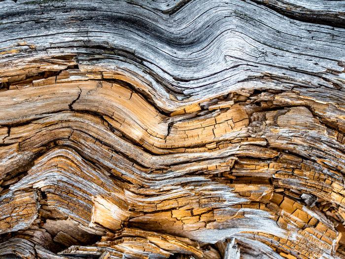 Close-up of rock in a desert
