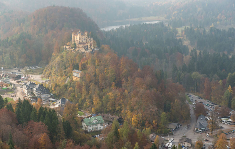 Hohenschwangau Castle with Autumn colors, Fussen, Germany Tree Plant Autumn High Angle View Change Scenics - Nature Day Nature Architecture Built Structure Building Exterior Fog Land Mountain Beauty In Nature Forest No People Growth Environment Outdoors TOWNSCAPE Autumn Collection