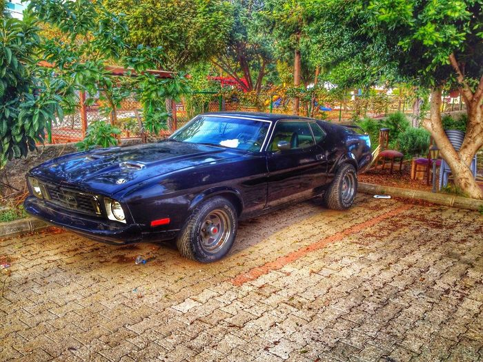 👍🏽👍🏽 First Eyeem Photo Ford Mustang
