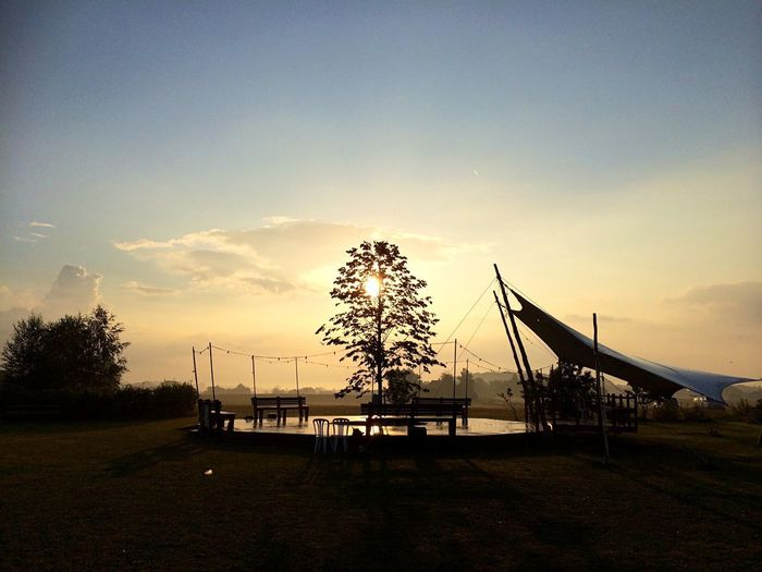 Morning sun EyeEmNewHere Sun Up Morning Sky Plant Nature Tree Silhouette Outdoors No People Tranquility First Eyeem Photo