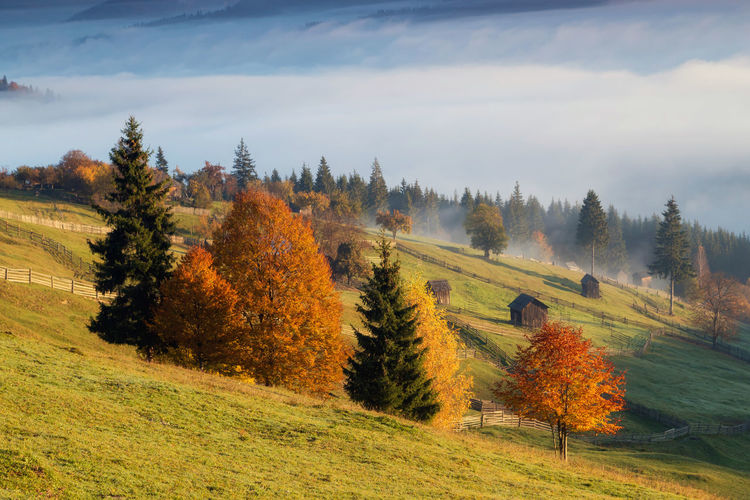 Foggy autumn morning above the traditional romanian cottages. Autumn colorful landscape in the romanian village Autumn Fashion Landscape Forest Cottage Village Colors Morning Light Sunrise Foggy Morning Romania Bucovina Bucovina Romania Hills Mountains Foliage Hut Rural