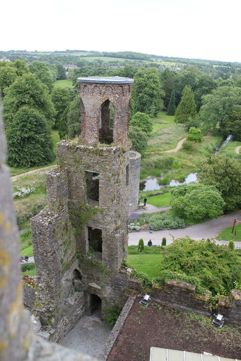 Ancient Ancient Civilization Architecture Architecture Blarney Castle Built Structure Castle Castle Castle Ruin Castles Day Deterioration History Old Old Ruin Outdoor Photography Outdoors Ruined Ruins Run-down Sky The Past Tourism Travel Destinations Tree