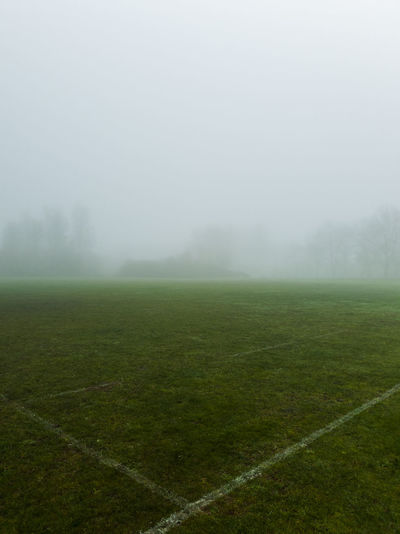 Scenic view of field against sky during foggy weather