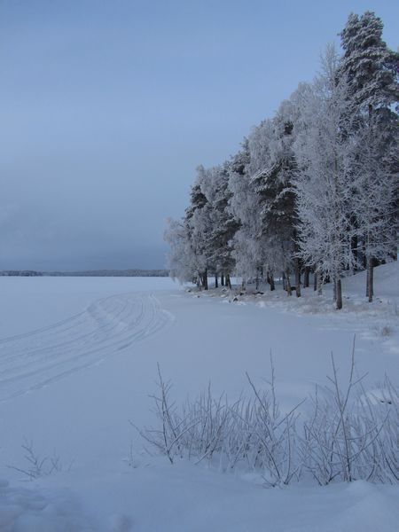 A perfect winter day in Kuhmo, in January 2013. Winter Snow Cold Temperature Tree Season  Tranquil Scene Scenics Landscape Clear Sky Nature Non-urban Scene Beauty In Nature Snowcapped Day Outdoors Canon Powershot Kuhmo Finland North Frozen Lake Frost On Trees Talvi Vintern Invierno