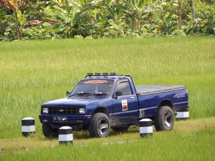 Grass Green Color Growth Nature No People Land Vehicle Outdoors Pick-up Truck Close-up Day