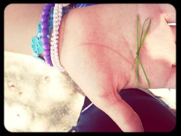 io boh.. Grass Fiocco Friends Love