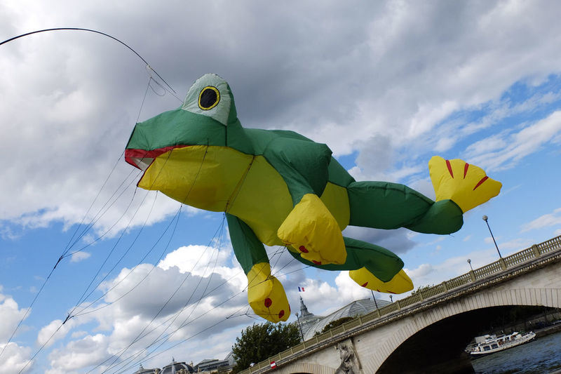 Life on the Seine riverbanks. Huge frog kite. Capital Cities  Citylife Cityscape Leisure Activities In Paris Nature In Paris Nature In The City Quiet Places In Paris Seine Seine River Banks Tourism Travel Destinations Weekend Activities Weekend Activities In Paris Kite Frog Bridge Sky Bergesdeseine