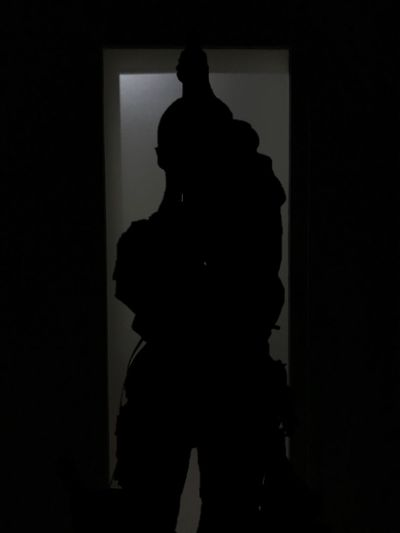 Silhouette Real