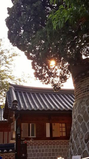 가회동의 발견. Sunset Traditional Architecture Rooftop Tree Beautiful Place Korea Oldwall