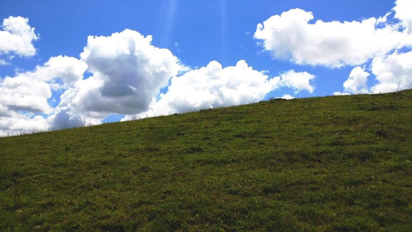 Cloud - Sky Sky Landscape Green Color Nature Agriculture Rural Scene Growth Scenics Beauty In Nature Field Outdoors No People Day Grass Windows