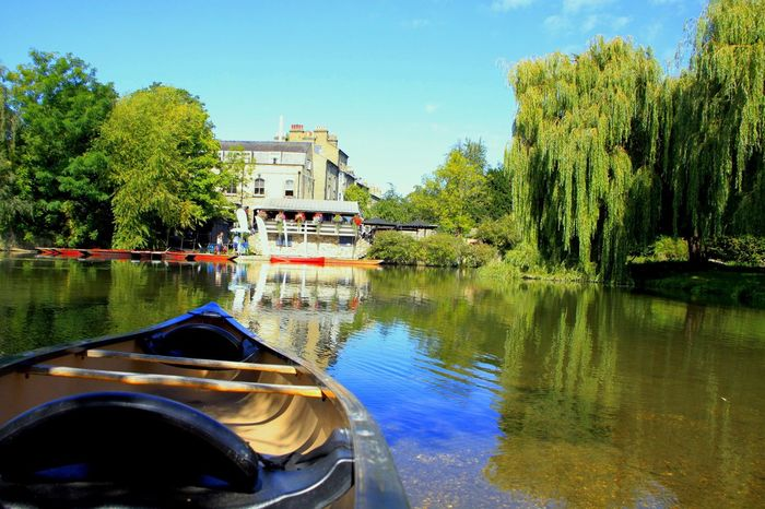 River Boat Tree Beauty In Nature Willow Tree EyeEm Best Shots - Nature Postcard Cambridge United Kingdom