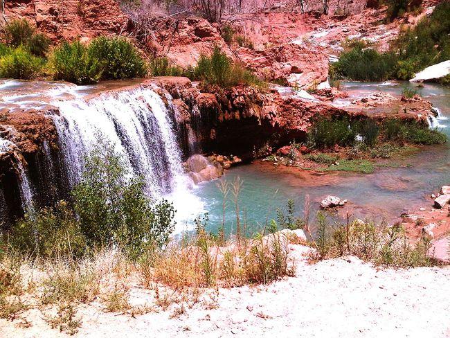 Navajo Falls Havasupai Arizona Nature Water Falls Eyeem Travel The Artsy Lens Mobile Photography Blackberryphoto Ladyphotographerofthemonth The Great Outdoors With Adobe The Great Outdoors - 2016 EyeEm Awards