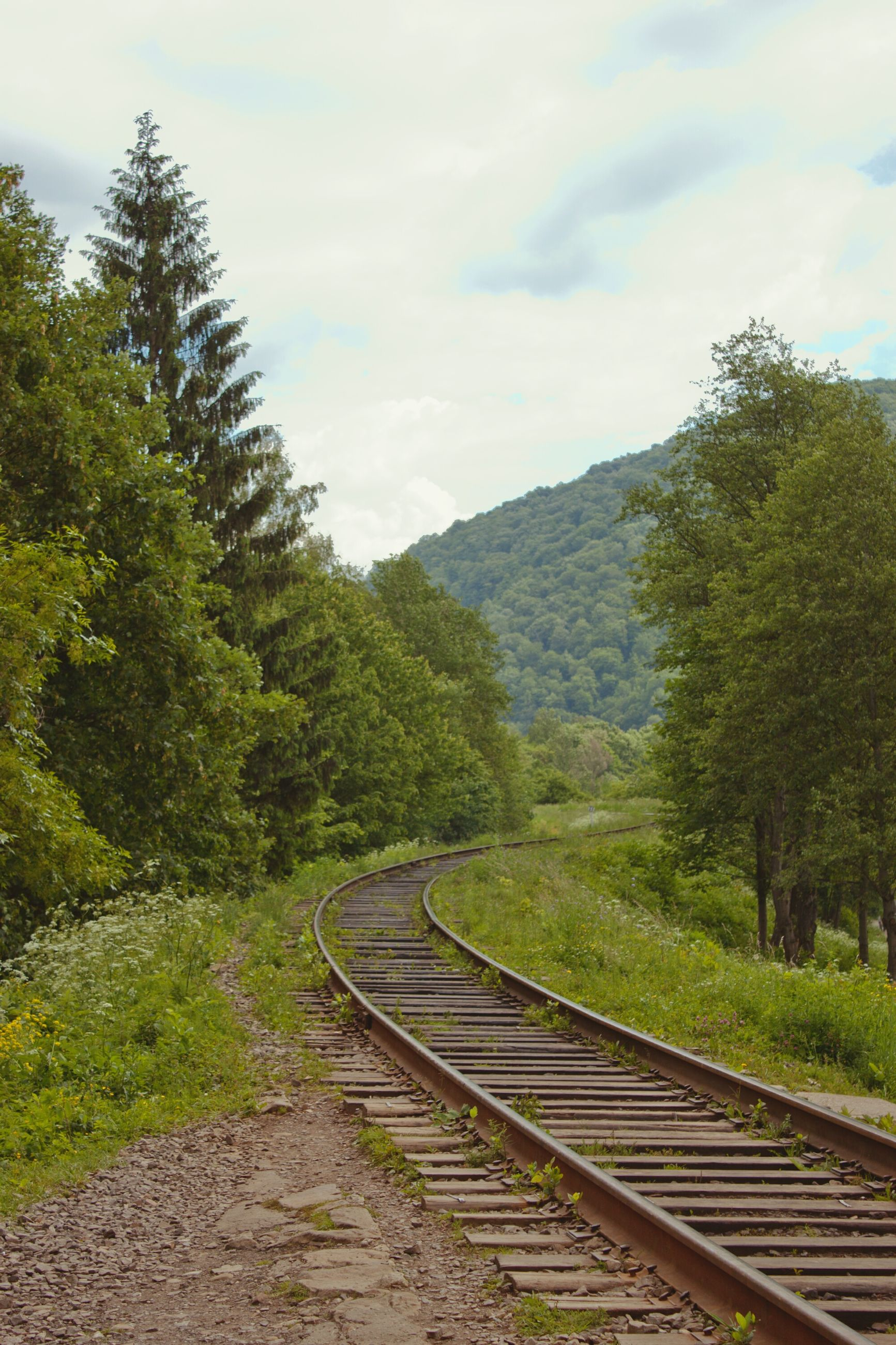 the way forward, tree, sky, tranquility, green color, railroad track, tranquil scene, nature, growth, diminishing perspective, mountain, landscape, railing, vanishing point, cloud - sky, beauty in nature, scenics, rail transportation, day, grass