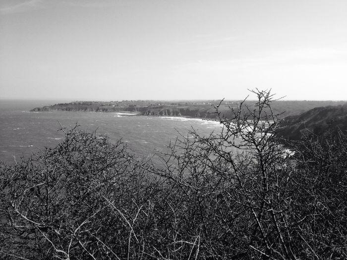 Blackandwhite Landscape Seaside Bretagne