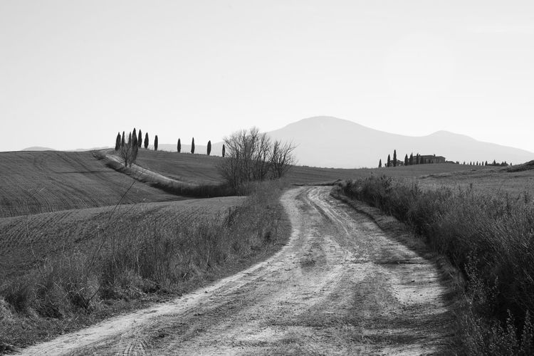 Sky Landscape Land Environment Field Nature Scenics - Nature Tranquil Scene Outdoors Plant Tranquility Mountain Clear Sky Road Beauty In Nature Non-urban Scene Dirt Road The Way Forward Direction Day Copy Space No People Crete Senesi Pienza Val D'orcia Tuscany Tuscany Hills Tuscany Countryside Cypresses Road