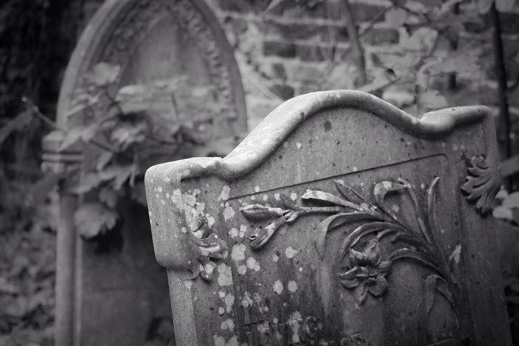 Cemetery Focus