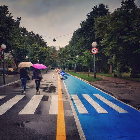 Umbrella Colorful Rainy Day Road Sign City Full Length Men Guidance Walking Sky