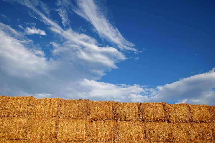Low Angle View Of Hay Bales Against Cloudy Blue Sky On Sunny Day