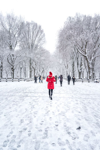 Female walking in the snow in Central Park located in New York City. Central Park Central Park Mall Red Coat Beauty In Nature Cold Cold Temperature Nature Rear View Scenics - Nature Selective Color Selective Focus Snow Tree Walking Warm Clothing Winter