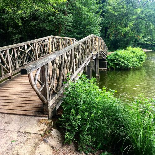 Tree Bridge - Man Made Structure Outdoors Plant Railing River Nature Day Growth Forest Park - Man Made Space Water No People Green Color Footbridge Beauty In Nature The Great Outdoors - 2017 EyeEm Awards Wood - Material Wood Nature Photography Naturelovers Beauty In Nature