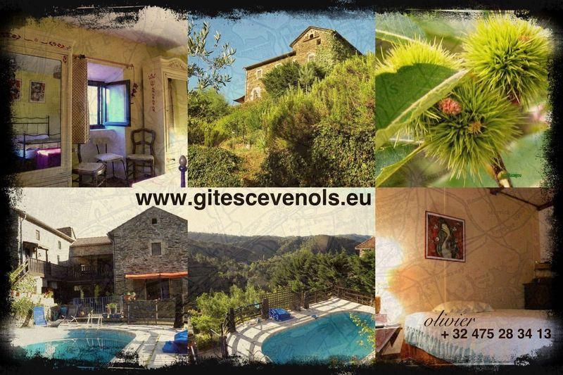 Cévennes Gard Lozère  Ardeche LanguedocRoussillon Languedoc-Roussillon Languedoc Gite Gites First Eyeem Photo
