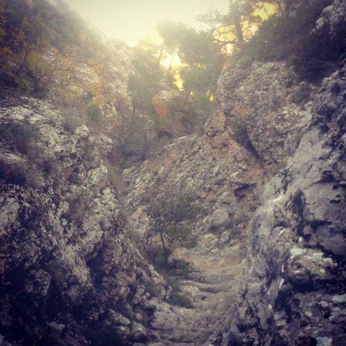 Trailrunning vallon St Michel