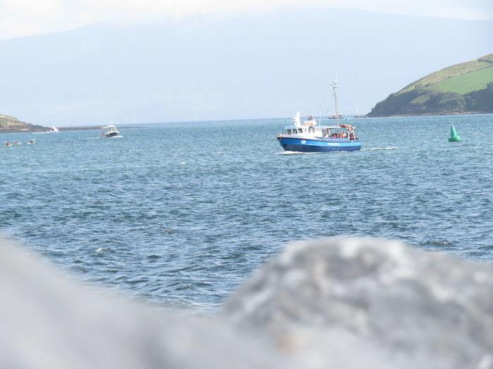 Seaview Dingle