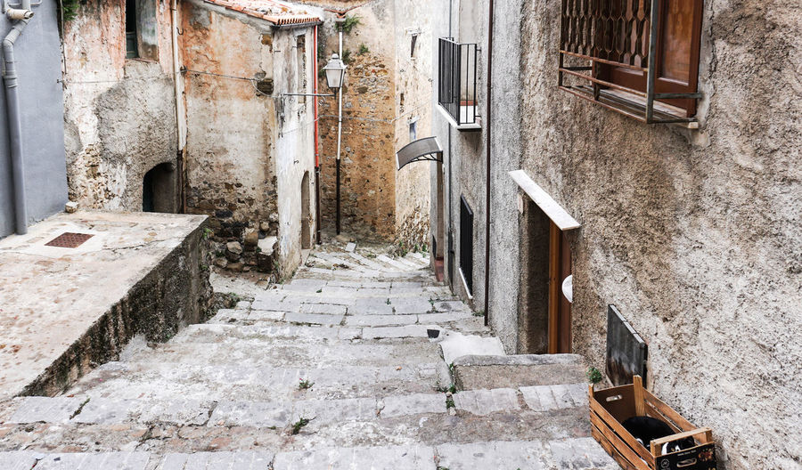 old alley with a cat in Palermo, Sicily, Italy Architecture No People Staircase Old Weathered Steps And Staircases Abandoned Alley Cat Palermo Sicily Wall