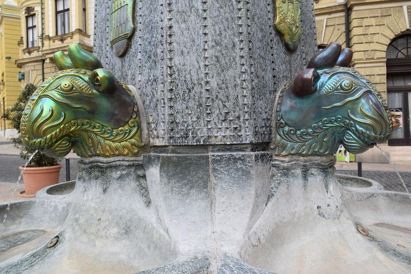 Architecture Art Bullock EyeEm Gallery Gargoyle Pécs Sculpture Zsolnay Zsolnay-kút