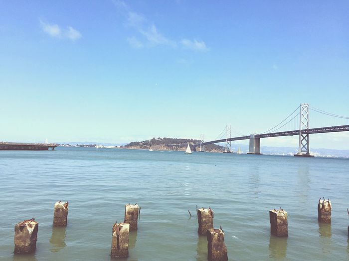 A day by the bay City Cityscapes Summer Views Friends EyeEm Best Shots