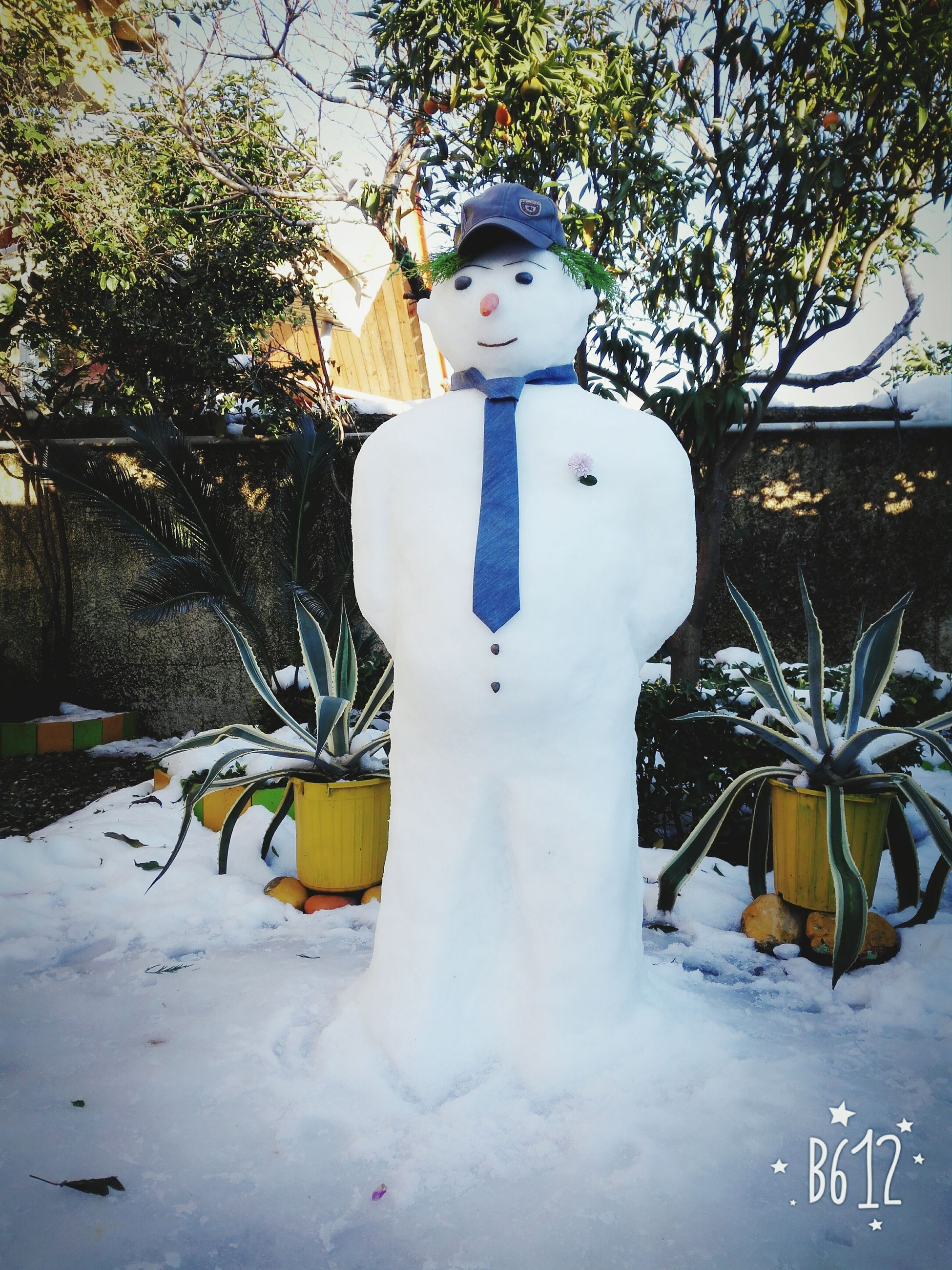 winter, snow, tree, snowman, creativity, nature, human representation, cold temperature, day, outdoors, no people