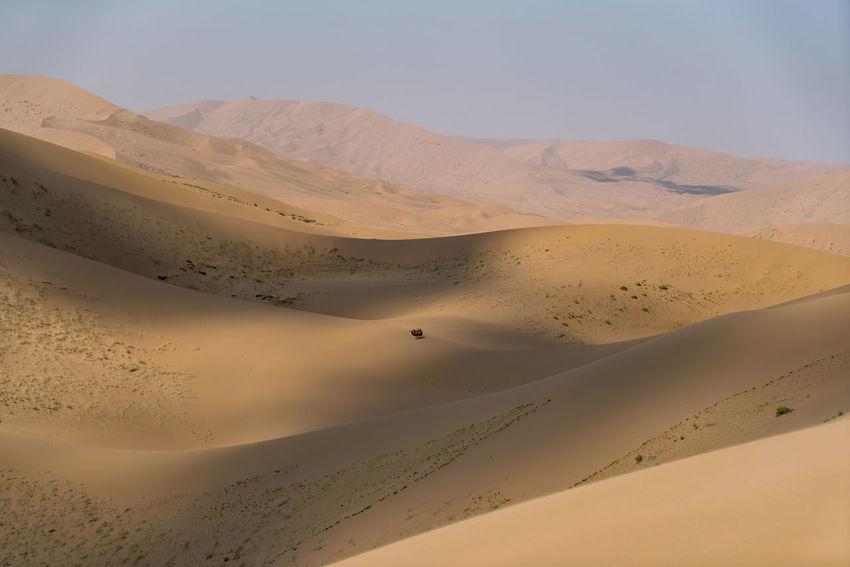 A lone pair of Bactrian camels look tiny in the vast desert. Badain Jaran desert, China Arid Climate Bactrian Camel Badain Jaran Desert Desert Desert Landscape High Resolution Landscape Sand Sand Dune Scenics