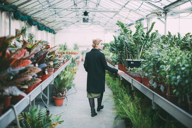 Agriculture Entrepreneur Female Flower Shop Freshness Gardening Girl Greenhouse Growth Indoors  Owner Plant Plants Potted Plant Store Walking Fresh On Market 2017