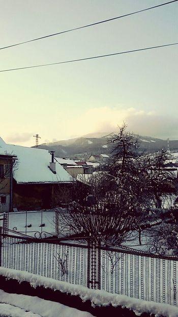 Winter Hills Houses